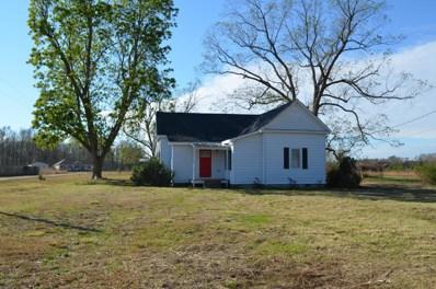 2317 White Oak River Road, Maysville, NC 28555 - MLS#: 100140798