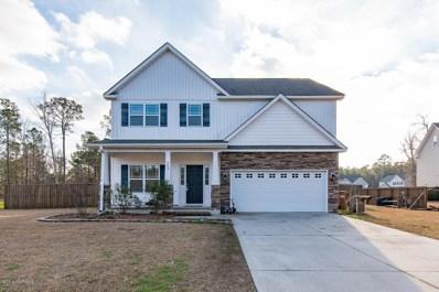 259 Blue Creek Farms Drive, Jacksonville, NC 28540 - MLS#: 100143548
