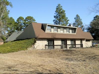 99 Shoreline Drive, River Bend, NC 28562 - MLS#: 100145812