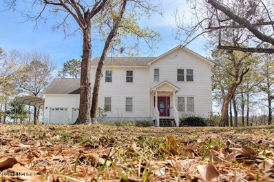 146 Hunting Bay Drive, Cape Carteret, NC 28584 - #: 100148368