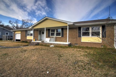 110 Graham Road, Newport, NC 28570 - MLS#: 100150113