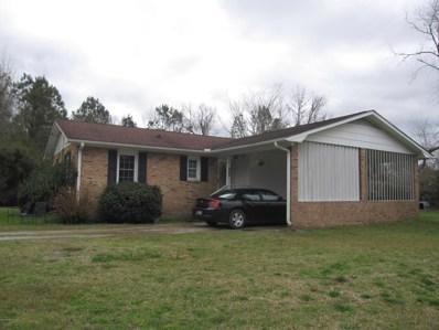 900 Blades Road, Havelock, NC 28532 - MLS#: 100157338