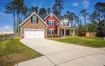 314 Little Egret Lane, Swansboro, NC 28584 - #: 100164086