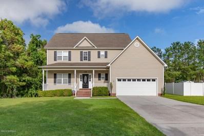 218 Raven Ridge Court, Swansboro, NC 28584 - #: 100166325