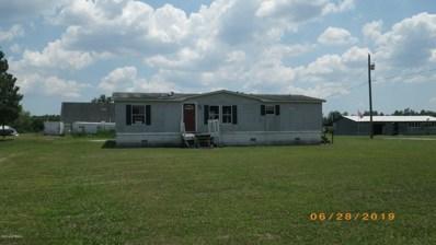 7111 White Oak River Road, Maysville, NC 28555 - #: 100173442