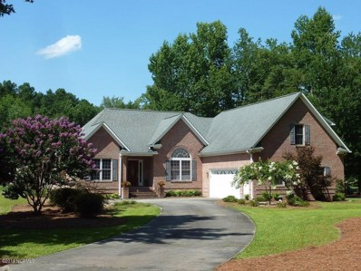 104 Riviera Court, New Bern, NC 28562 - #: 100179070