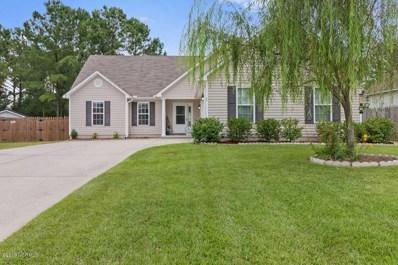23 Jasmine Lane, Jacksonville, NC 28546 - #: 100179773