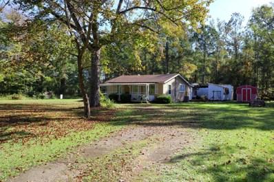 1190 Deppe Loop Road, Maysville, NC 28555 - #: 100190660