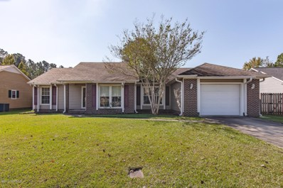 107 Saddle Ridge Court, Jacksonville, NC 28540 - #: 100191699