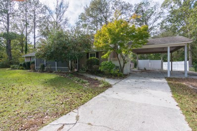 800 Mill River Road, Jacksonville, NC 28540 - #: 100192000