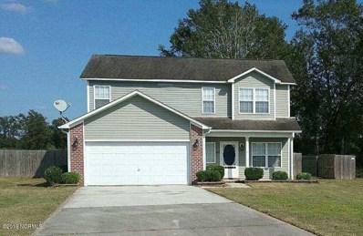 205 Chandler Court, Maysville, NC 28555 - #: 100193637