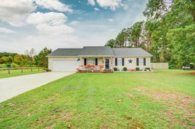 122 Meadow Farms Road, Richlands, NC 28574 - #: 100193730