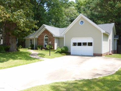 186 Raintree Circle, Jacksonville, NC 28540 - #: 100194097