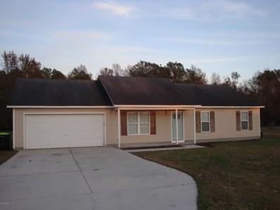 97 Meadow Farms Road, Richlands, NC 28574 - #: 100194475