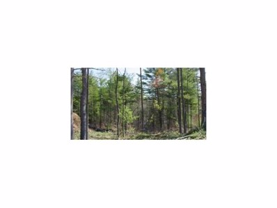 64 Governor Dinsmore Road, Windham, NH 03087 - #: 4053315