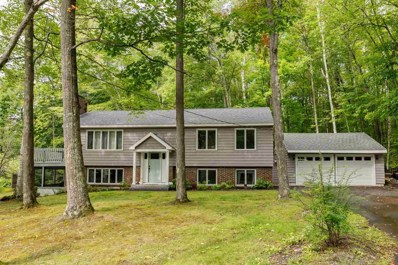 45 Winterhaven Road, Wolfeboro, NH 03894 - #: 4776270