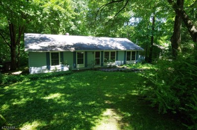 953 Cedar Dr, Stillwater Twp., NJ 07860 - MLS#: 3406021