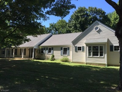 1 Tamarack Farm Ln, Tewksbury Twp., NJ 07830 - MLS#: 3422911