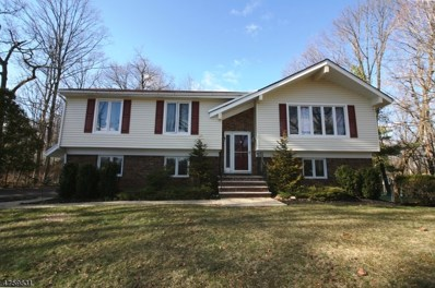 111 Reinman Rd, Warren Twp., NJ 07059 - MLS#: 3431035