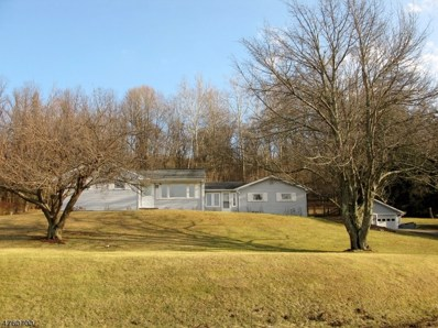 174 Mount Joy Rd, Holland Twp., NJ 08848 - MLS#: 3431652