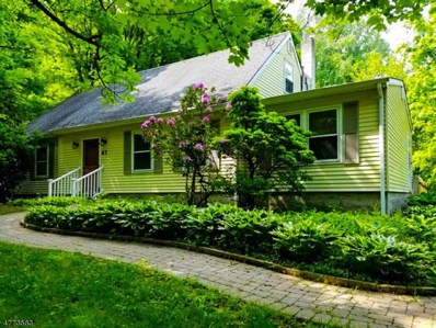 67 Hollow Rd, Lebanon Twp., NJ 08826 - MLS#: 3442718