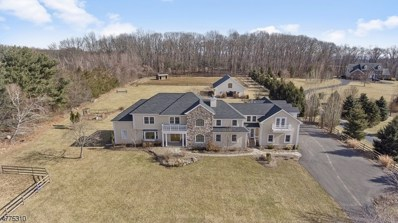 240 Old Turnpike Rd, Tewksbury Twp., NJ 07830 - MLS#: 3444209