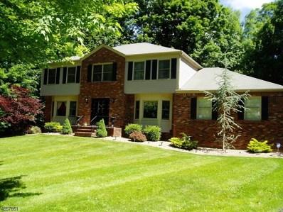 91 Pleasant Hill Rd, Randolph Twp., NJ 07869 - MLS#: 3444210