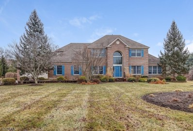 215 Johnson Rd, Readington Twp., NJ 08889 - MLS#: 3444911