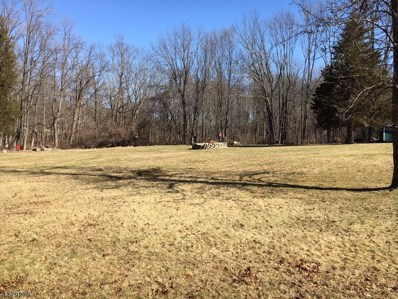 29 Sharrer Rd, Lebanon Twp., NJ 07865 - MLS#: 3449610
