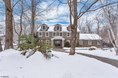 101 Cheshire Ln, Ringwood Boro, NJ 07456 - MLS#: 3453892