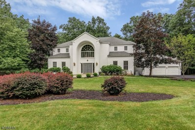 3 Abedim Way, Washington Twp., NJ 07830 - MLS#: 3459868