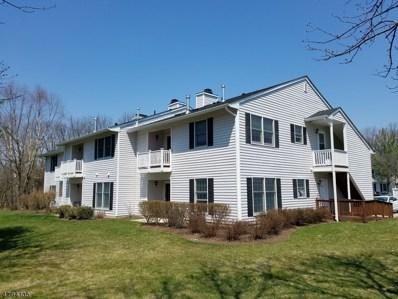348 Phoebe Court, Readington Twp., NJ 08887 - MLS#: 3461386