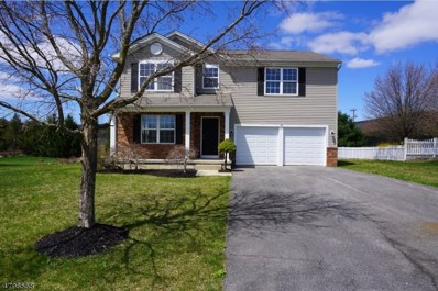 48 Alvin Sloan Ave, Washington Boro, NJ 07882 - MLS#: 3463597