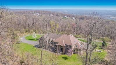 6 Alexandria Overlook, Alexandria Twp., NJ 08848 - MLS#: 3467005