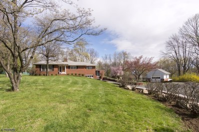 6 Old Route 518 W, West Amwell Twp., NJ 08530 - MLS#: 3467530