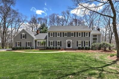 31 Big Spring Rd, Tewksbury Twp., NJ 07830 - MLS#: 3467771