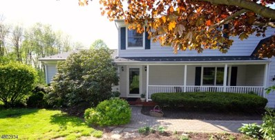 225 Mount Joy Rd, Holland Twp., NJ 08848 - MLS#: 3469871