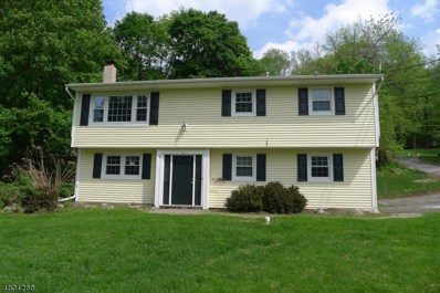 66 Shore Rd, Green Twp., NJ 07821 - MLS#: 3470735