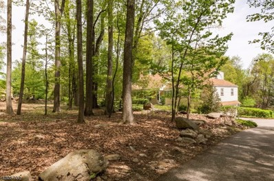 17 Big Spring Rd, Tewksbury Twp., NJ 07830 - MLS#: 3472271