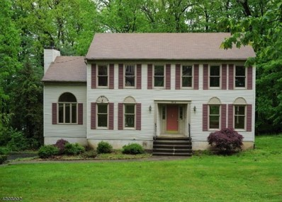 100 Mount Pleasant, Randolph Twp., NJ 07869 - MLS#: 3475024