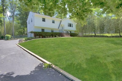 22 Pine Brook Rd, Montville Twp., NJ 07082 - MLS#: 3478652