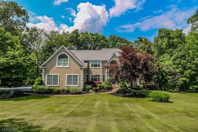 14 Ups And Downs Ct, Raritan Twp., NJ 08822 - MLS#: 3479106