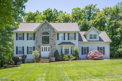 3 Old Township Rd, Mount Olive Twp., NJ 07836 - MLS#: 3479669