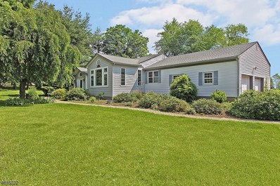 204 Cokesbury Rd, Tewksbury Twp., NJ 08833 - MLS#: 3481801