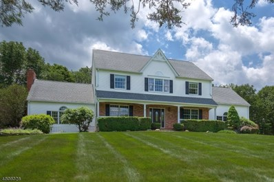 20 Brier Rd, Readington Twp., NJ 08889 - MLS#: 3482655