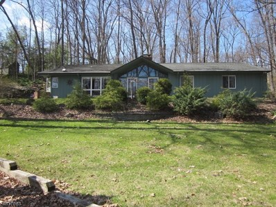 911 Ridge Rd, Stillwater Twp., NJ 07860 - MLS#: 3483641