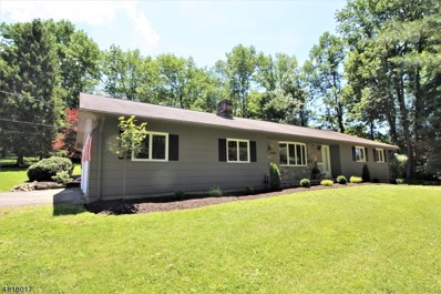 26 Ridgeway Ave, Hope Twp., NJ 07825 - MLS#: 3483813