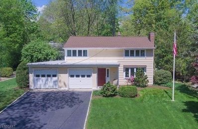 966 Andover Ter, Ridgewood Village, NJ 07450 - MLS#: 3484778