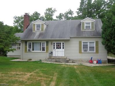 28 Meadow Ln, Green Twp., NJ 07821 - MLS#: 3487580