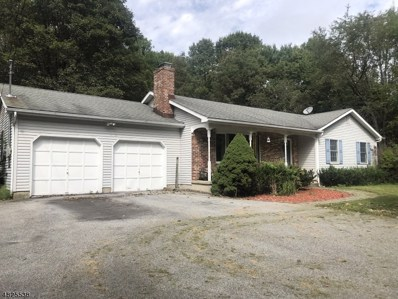 569 Delaware Rd, Hope Twp., NJ 07844 - MLS#: 3490662